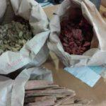 emporio amalur chile directorio sustentable