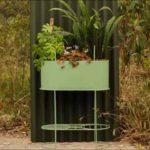 sativa colombia directorio sustentable
