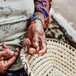volviendo al origen paraguay directorio sustentable